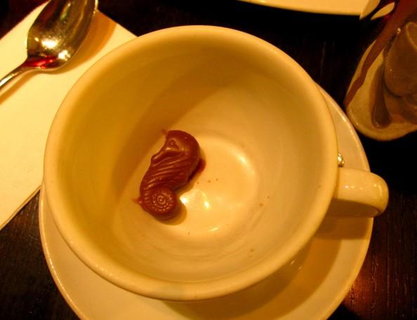 Chocolate seahorse, Guylian, belgian chocolate cafe, Sydney