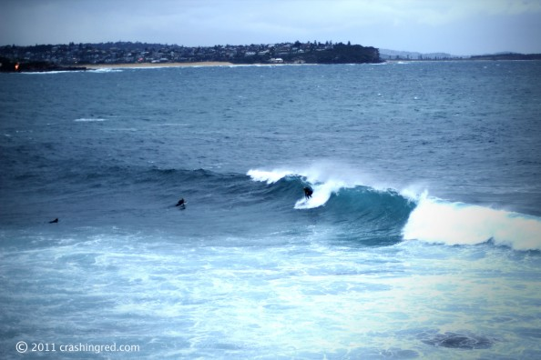 Shelly beach park, surfers, scenery, Manly beach, sydney northern beaches, lifestyle blog